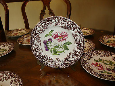 """WOODLAND GARDEN 6 1/2 """" BREAD AND BUTTER PLATE BY SPODE"""