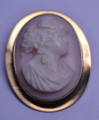 Antique Victorian 10K Yellow Gold Pink Conch Shell Cameo Pin Or Pendant