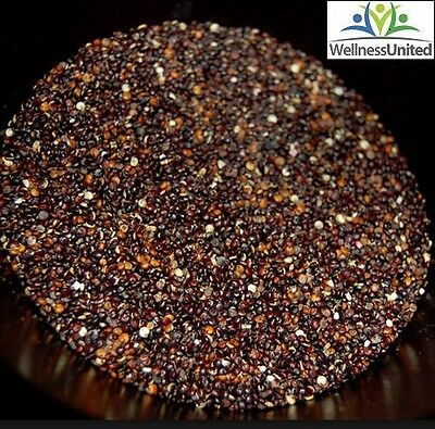 Organic Quinoa (Black) 25kg  Bulk Gluten Free, Low GI, Super food