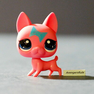 Littlest Pet Shop 2014 Wave 2 #3537 Cat Hairless