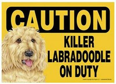 "Funny Dog Sign Caution Killer LABRADOODLE GOLDEN On Duty 5"" x 7"""
