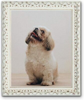 Vintage Ornate Shabby Chic White and Black Picture Photo Frames New