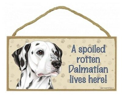"Spoiled Rotten Dalmatian Lives Here Sign Plaque 10"" x 5"" Dog Pet Gift"
