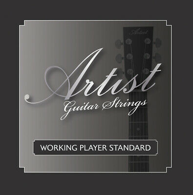 Artist ACST1253 Acoustic Guitar Steel Strings Gauge 12-53 - New