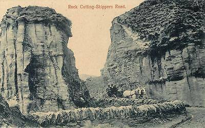 c1910 NEW ZEALAND Postcard HORSE & BUGGY Skippers Road ROCK CUTTING Queenstown