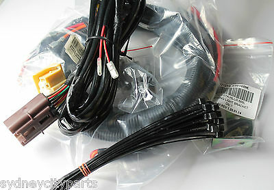 Awesome Toyota Landcruiser 200 Series Driving Lamp Wiring Harness Kit From Wiring Database Redaterrageneticorg