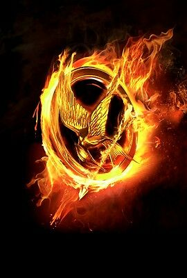 New Hunger Games Logo Catching Fire Movie Wall Art Print - Premium Poster