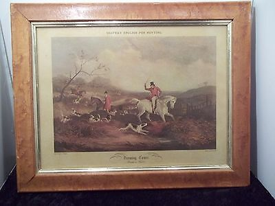 Vintage W. Shayer's English Fox hunting Drawing Cover Hound at Fault J.H. Lynch