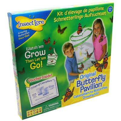 Insect Lore Live Butterfly Pavilion Hatching Kit