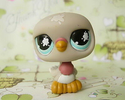 LITTLEST PET SHOP Grey DOVE PIGEON Blue Eyes #812
