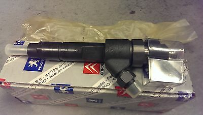 Genuine Citroen/Peugeot Injector New Part No: 198081