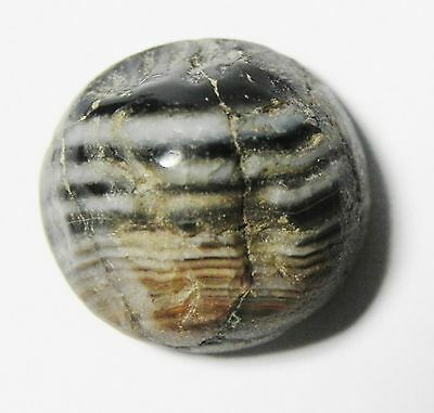 Zurqieh - Ancient Agate Ring Bezel From Egypt, Rare Sulaimani Type, 2000 B.c