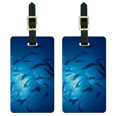 Scuba Dive Diving Ocean Fish Luggage Suitcase Carry-On ID Tags Set of 2