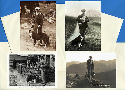 Border Collie Pack Of 4 Vintage Style Dog Print Greetings Note Cards #1