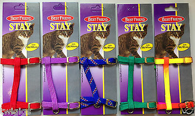NEW Cat Kitten Puppy Rabbit Harness Red Purple Green Blue & Neon Mix 36-41cm