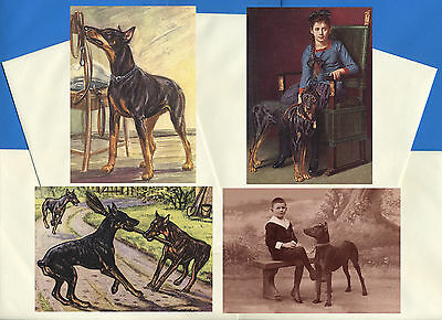Doberman Pinscher Pack Of 4 Vintage Style Dog Print Greetings Note Cards #1