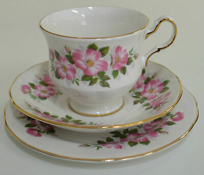 Queen Anne Floral Trio # 8072, Cup Saucer & Plate (#13) Estate Item