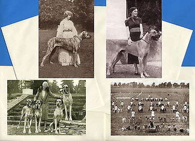 Great Dane Pack Of 4 Vintage Style Dog Print Greetings Note Cards #1