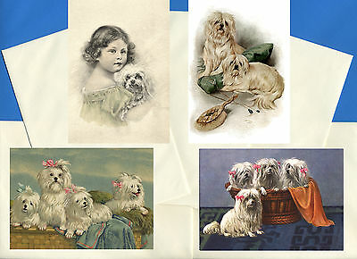 Maltese Pack Of 4 Vintage Style Dog Print Greetings Note Cards #1
