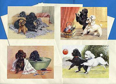 Poodle Pack Of 4 Vintage Style Dog Print Greetings Note Cards #1