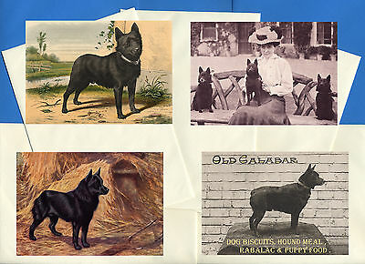 Schipperke Pack Of 4 Vintage Style Dog Print Greetings Note Cards #2