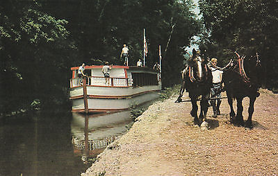 CANAL BOAT DRAFT HORSE POSTCARD - MONTICELLO II COSHOCTON OHIO