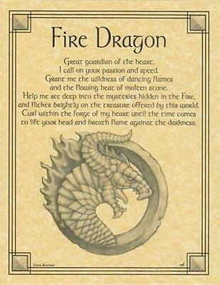 Fire Dragon Parchment Book of Shadows!