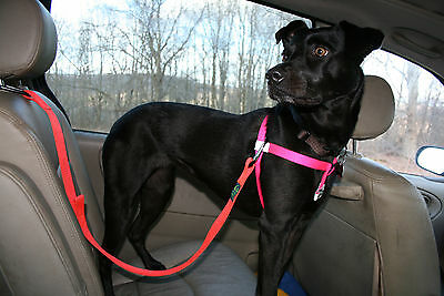 Adjustable Vehicle Safety Belt for Dogs, Worry Free Driving, Hunter Orange