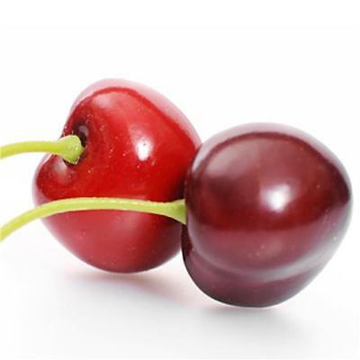 Box of 35 Artificial Cherries - Decorative Plastic Fruit - Fake Red Cherry