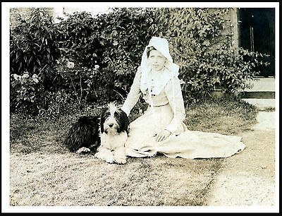 Bearded Collie And Young Girl Charming Vintage Style Image Dog Print Poster