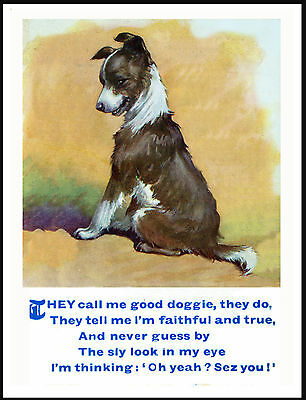 Border Collie Puppy With Poem Lovely Vintage Style Dog Print Poster