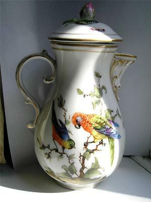 Antique Large Hochst style German porcelain Coffee pot Parrots exotic birds 1890