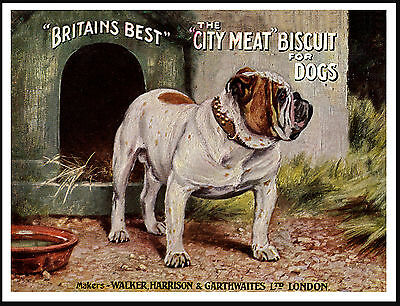 ENGLISH BULLDOG ON DOG BISCUITE ADVERT LOVELY VINTAGE STYLE DOG PRINT POSTER