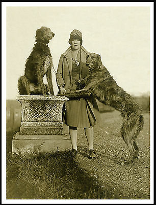 Scottish Deerhound Lady And Her Dogs Great Vintage Style Image Dog Print Poster