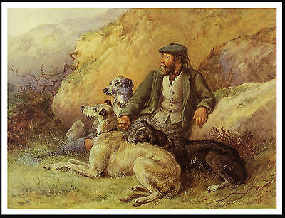Scottish Deerhound Scottish Gamekeeper And Dogs Lovely Image Dog Print Poster