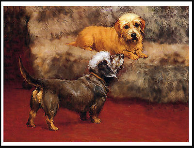 Dandie Dinmont Terrier Two Dogs Lovely Dog Print Poster