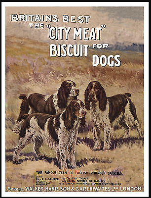 English Springer Spaniel Lovely Vintage Style Dog Food Advert Print Poster