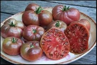 Tomato Cherokee Purple (Lycopersicon Esculentum) Garden Vegetable 200 Seeds
