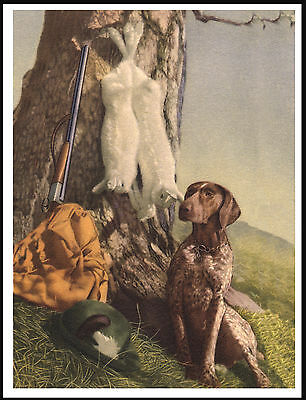 German Shorthaired Pointer Dog Guards Gun And Game Great Dog Print Poster