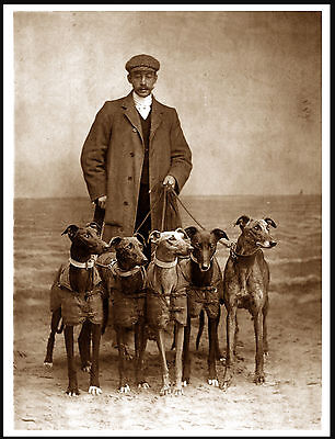 Greyhound Man And His Five Dogs Lovely Period Image On Dog Print Poster