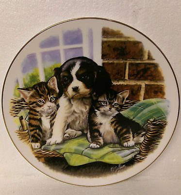 Cuddle Up Close Royal Albert Playful Friends Collector Plate.
