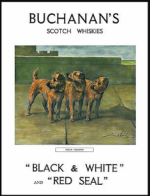 Irish Terrier Dogs Lovely Vintage Style Whisky Advert Print Poster