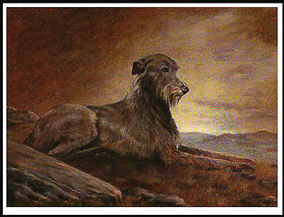 Irish Wolfhound On A Hillside At Dawn Great Vintage Style Image Dog Print Poster