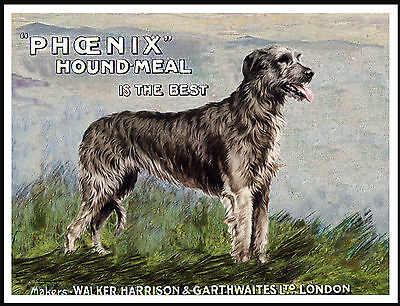 Irish Wolfhound Lovely Vintage Style Dog Food Advert Print Poster