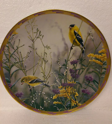 Golden Splendor From Nature's Collage Plate Collection Brooks & Bentley
