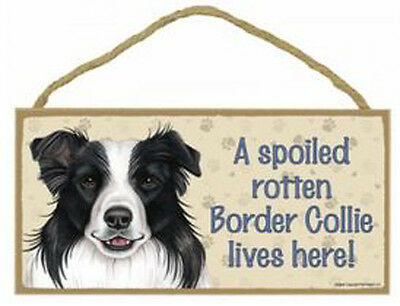 "Spoiled Rotten Border Collie Sign Plaque Dog  10"" x 5""  Pet Gift"