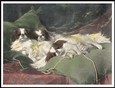Japanese Chin Three Dogs On Cushions Lovely Vintage Style Dog Art Print Poster