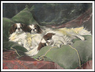 Japanese Chin Three Little Dogs On Cushions Lovely Dog Print Poster