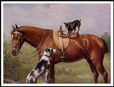 Miniature Pinscher Great Dane And Horse Lovely Image Dog Print Poster