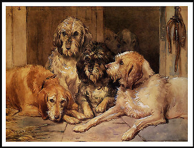 Otterhound  Dogs At Rest Lovely Vintage Image Dog Print Poster